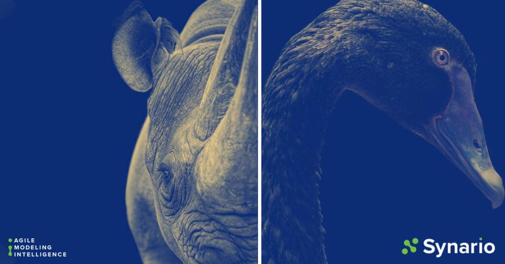 Gray Rhino Vs. Black Swan Events: Prepare and Adapt to High-Risk Crises