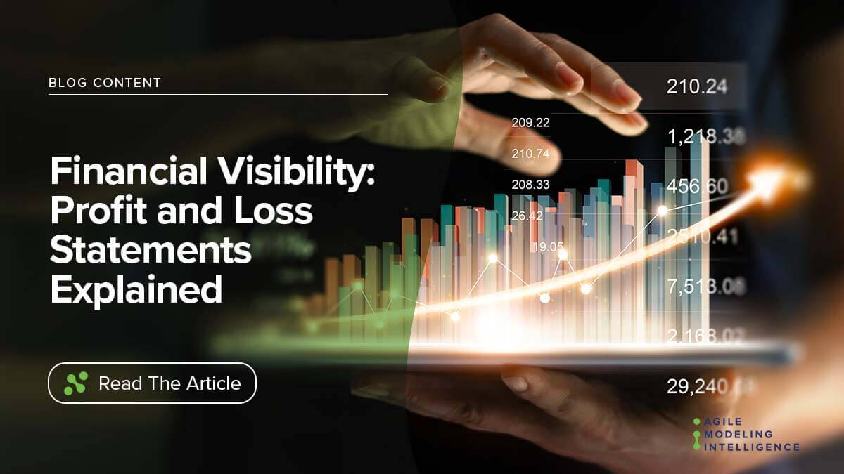 Financial Visibility: Profit and Loss Statements Explained